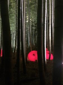 Kodaiji light-up